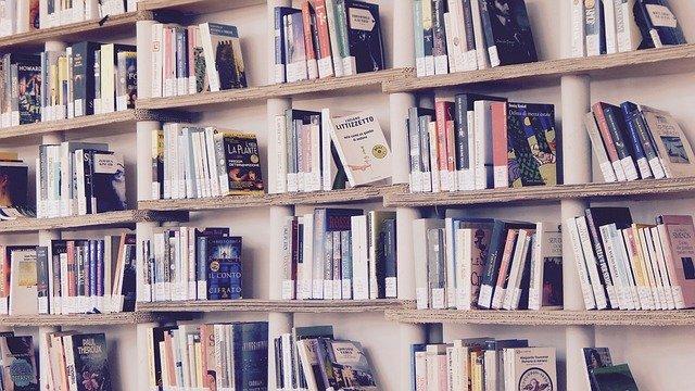 Místní knihovna Zdounky